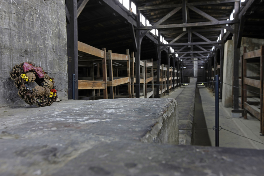 Auschwitz Day Trips From Prague  Private Guided Tours