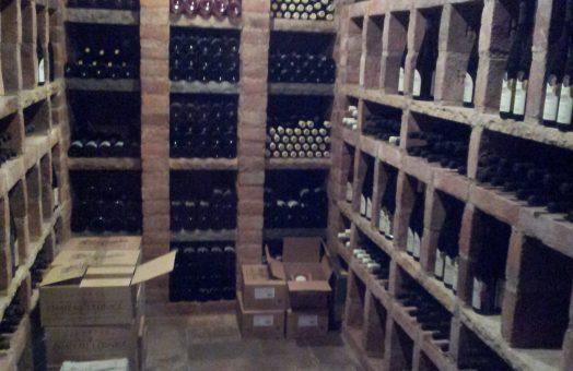 Wine tasting in Moravia, Czech Republic